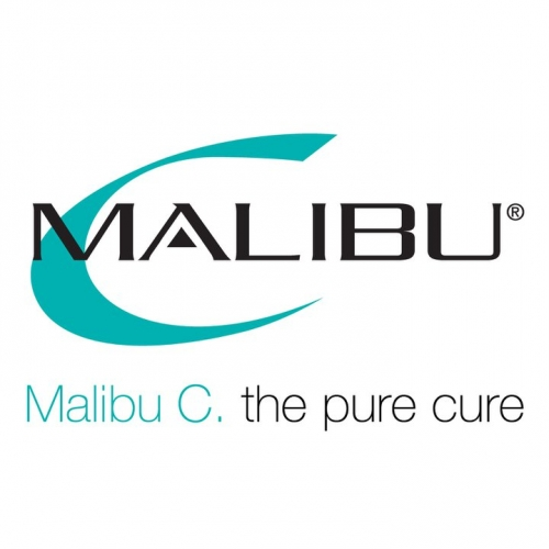 malibu mane advocates hair salon nyc